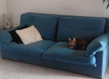 cerco divano in regalo regalo divano trieste