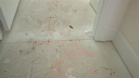 Squeaky Shower Floor by 100 Squeaky Bathroom Floor How To Lay A Subfloor How Tos Diy How To Replace Underlayment