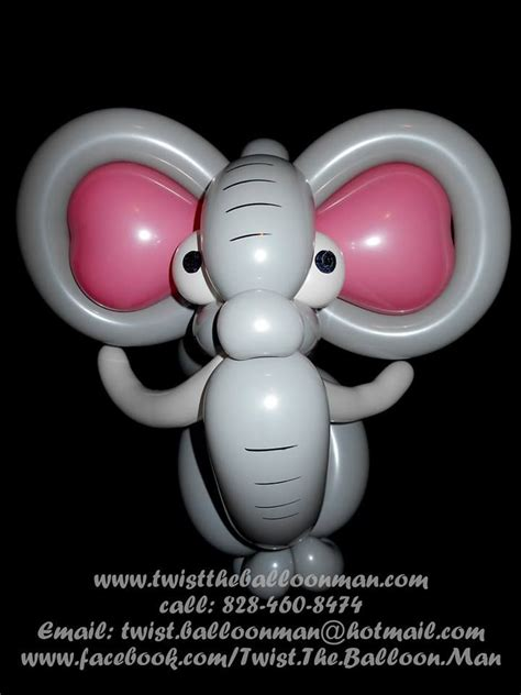 Elephant balloon balloon animals land pinterest
