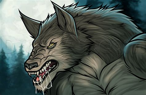 werewolf head tutorial how to draw a werewolf easy step by step werewolves