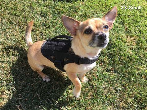 puppy vest kilo niner tactical molle vest