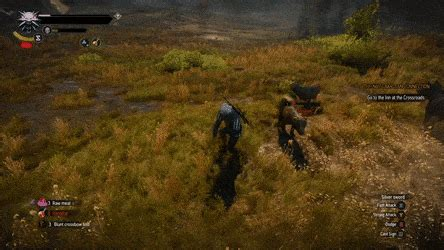witcher 3 ragdoll dolphin dive gifs search find make gfycat gifs
