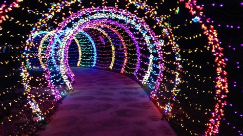 Garden Of Lights Green Bay Wi by Wps Garden Of Lights Has New Features This Year Wluk