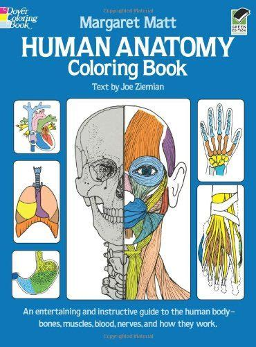 anatomy colouring book blackwells 123 best images about newcastle science comic on