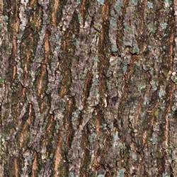 seamless tiling tree bark texture opengameart org