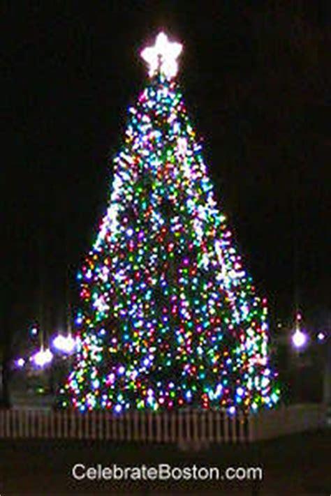 images of human christmas tree choir christmas tree