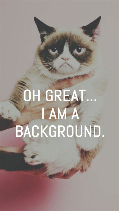 grumpy cat wallpaper iphone grumpy cat great i am a background iphone 6 wallpaper