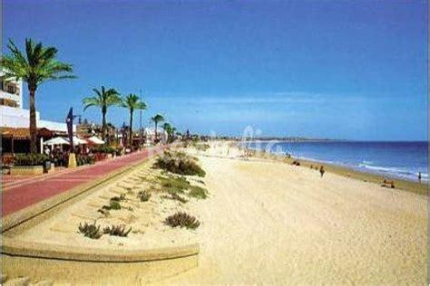 apartamentos en chiclana playa chiclana apartamentos 500m playa barrosa piscina la