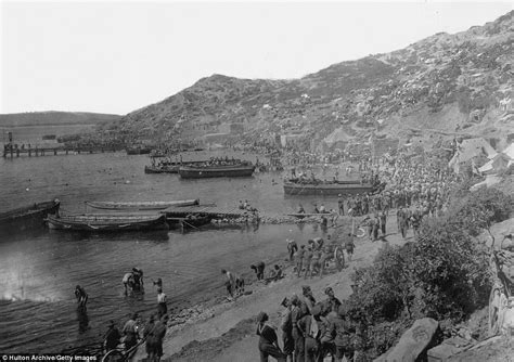 anzac cove to afghanistan the history of the 3rd brigade books battle of gallipoli pictures posters news and
