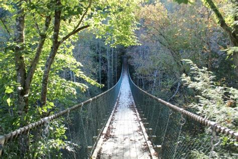 foxfire mountain swinging bridge seeking thrills on a great smoky mountains vacation