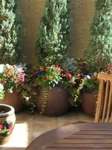 best 25 large garden pots ideas on outdoor