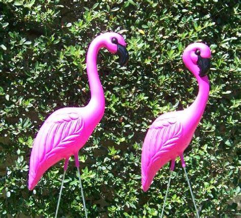 pink flamingos pink yard flamingos plastic flamingos pink lawn flamingos