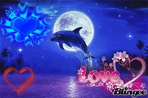 imagenes de amor animadas de delfines delfin de amor picture 121794514 blingee com
