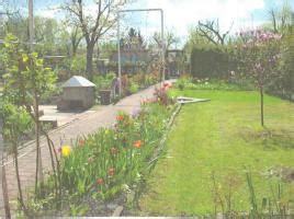 garten mieten pachten berlin kleingarten in luckenwalde pacht garten schrebergarten