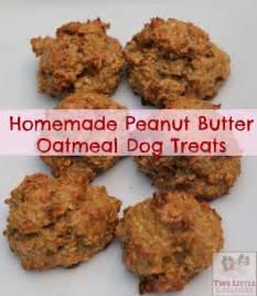 home made treats treats peanut butter oatmeal two
