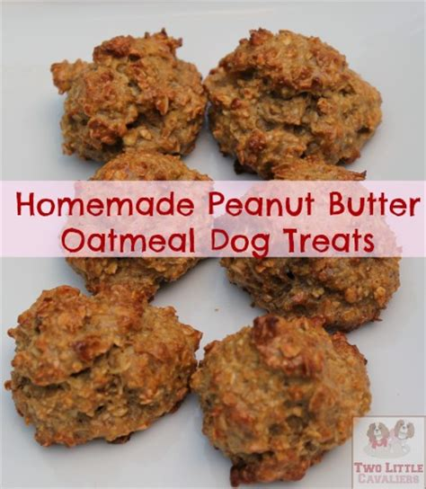 Handmade Treats - treats peanut butter oatmeal two