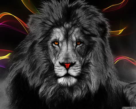 lions colors in color by michalius89 on deviantart