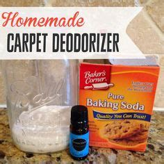 boat carpet deodorizer 1000 images about home remedies on pinterest rodents