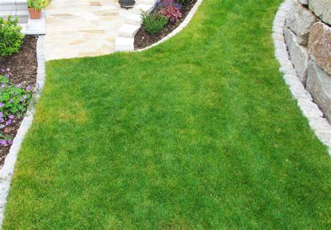 Ausschreibungen Garten Und Landschaftsbau by Rasenneuanlage Rollrasen Rasenregeneration Huber Gartenbau