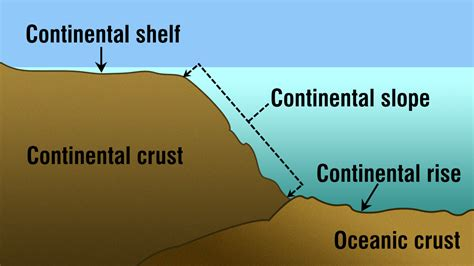 Continental Shelf Slope And Rise by Interesting Facts About The Continental Slope