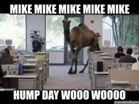 Camel Hump Day Meme - hump day jun 12 11 52 utc 2013