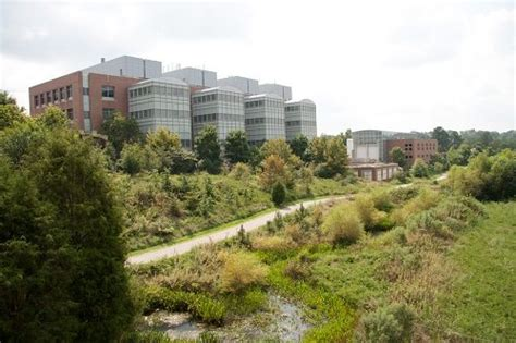 Mba Raleigh Nc by The 30 Most Innovative Colleges Schools Center