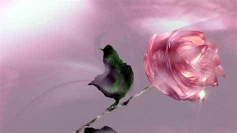 imagenes en 3d rosas rosa 3d con efecto cristal 1366x768 fondos de
