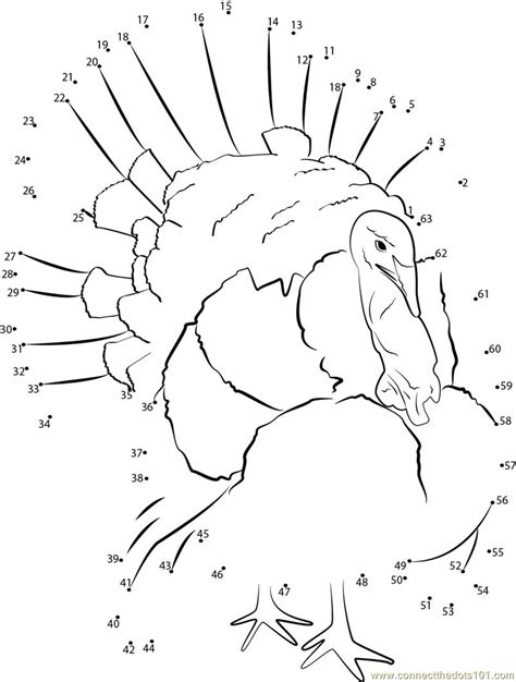 printable turkey dot to dot connect the dots exotic bird turkey birds gt turkey dot
