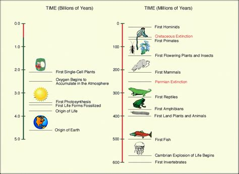 the origin and nature of life on earth the emergence of the fourth geosphere ebook origins of life timeline and research philosophical