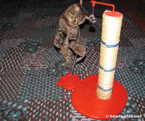 How To Keep Cat Furniture by How To Prevent A Cat From Scratching Furniture How To A To Z
