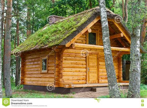 log cabine wooden log cabine shelter thatched roof in pine