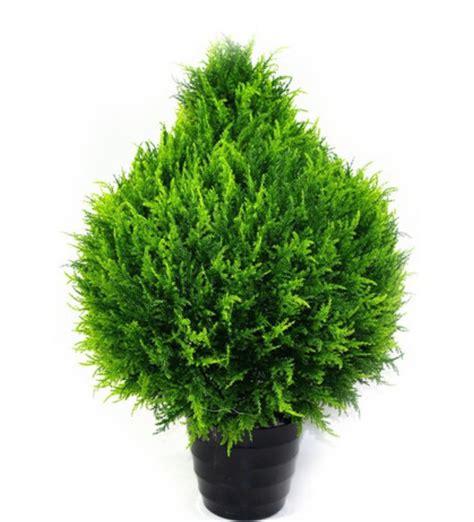 artificial cypress bush  indoor  outdoor