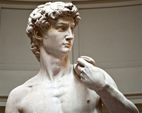 michelangelo david statue the many meanings of michelangelo s statue of david