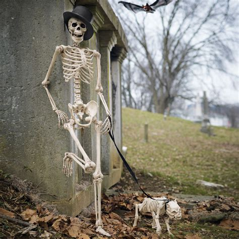 Dog Halloween Decorations Skeleton Dog On Leash The Green Head