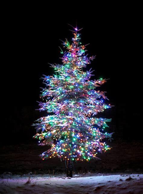 12 days of christmas seven springs lights tour and