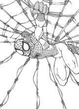 SPIDERMAN - Dibujos para imprimir colorear y pintar