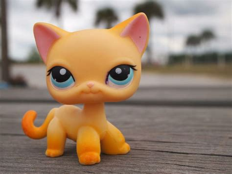 Dying And The Littlest Lives by 1000 Ideas About Lps Cats On Lps Pets Lps