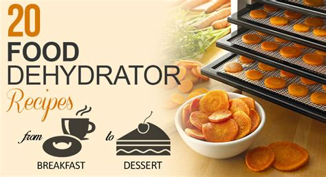 20 Delicious Food Dehydrator Recipes ? Kitchen Chatters