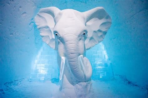 Four Lights facts icehotel