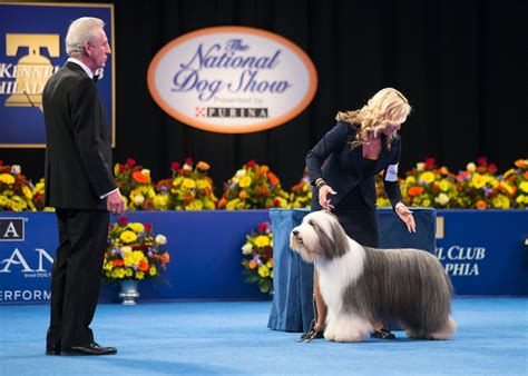 purina show national show presented by purina 174 set for 16th annual special on nbc following