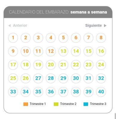 Calendario Embarazo 2014 Calendario Embarazo Bebes Calendario Embarazo