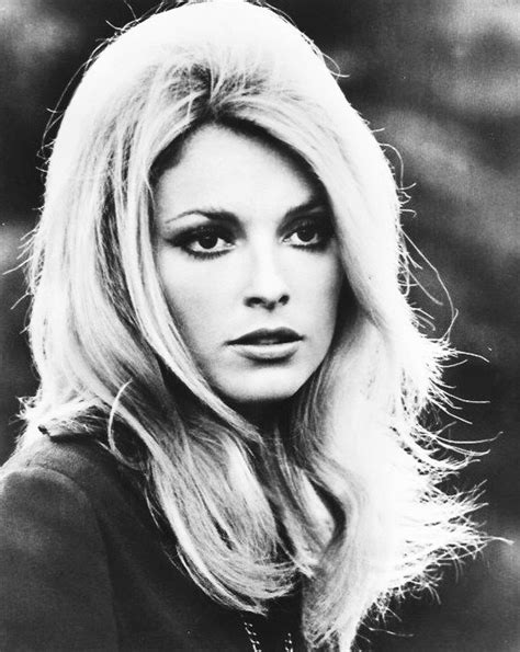 sharon tate the tragic story of the lovely sharon tate