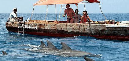 boat trip zanzibar zanzibar dolphin day tours kizimkazi boat trip stone
