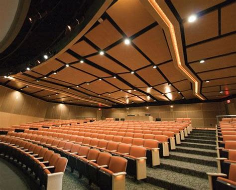 commercial ceiling exposed  acoustical element