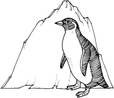 coloring pages for penguins free printable penguin coloring pages for kids