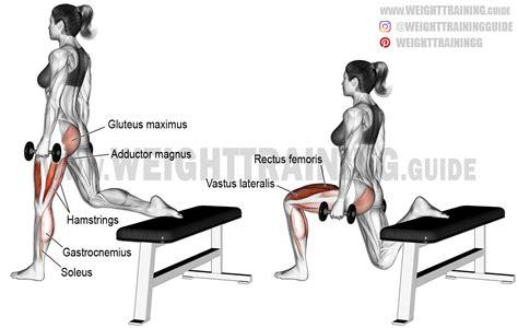 1 leg bench squat dumbbell one leg split squat aka dumbbell bulgarian split