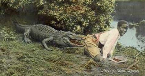 Alligator Black were black children used as alligator bait in the american