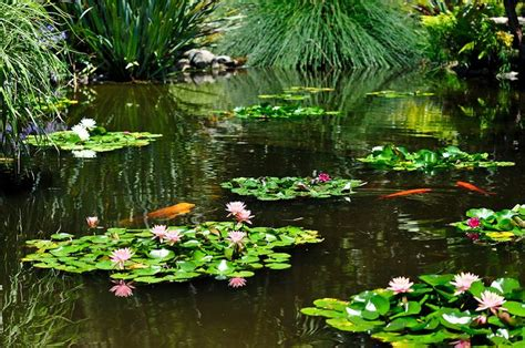 huntington gardens san marino favorite places pinterest