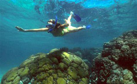 catamaran snorkeling belize belize snorkeling tours san pedro ambergris caye