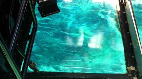 glass bottom boat key largo fl glass bottom boat in key largo fl youtube